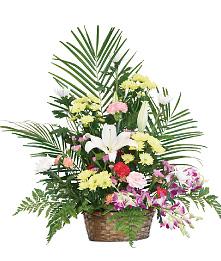 生花かご盛7,000円